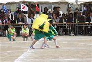 2014_171_R.jpg