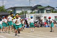 2014_394_R.jpg